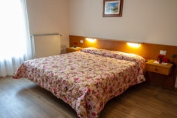 Classic Room 2 Hotel Stella Alpinia