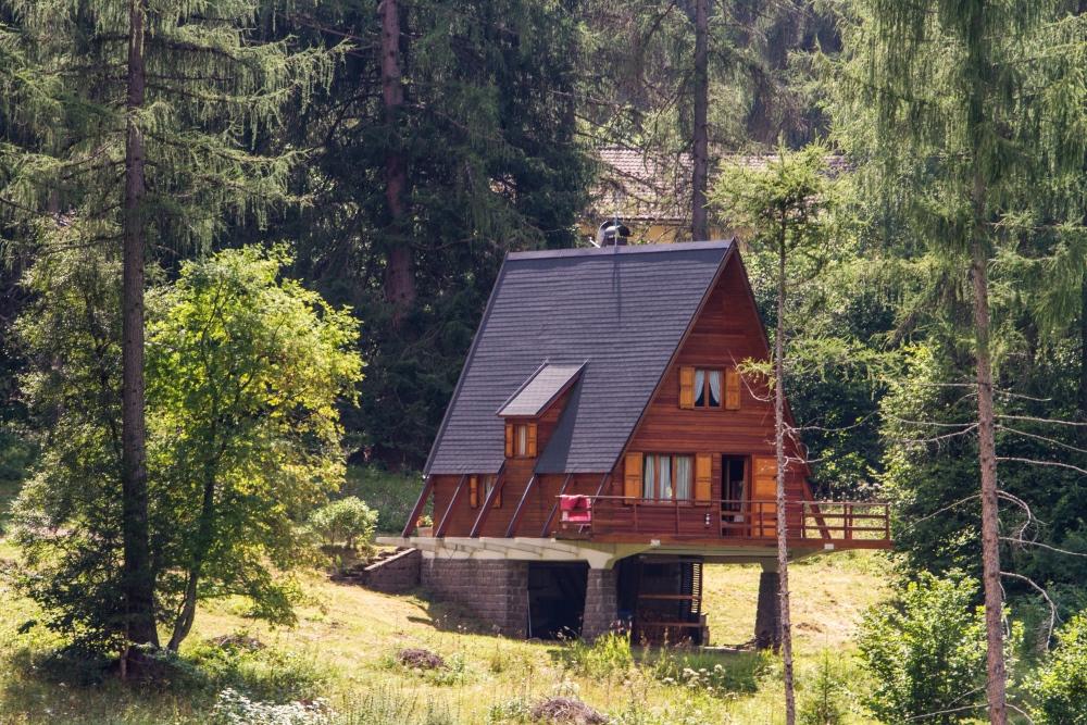 Hotel Stella Alpina Bellamonte - albergo natura